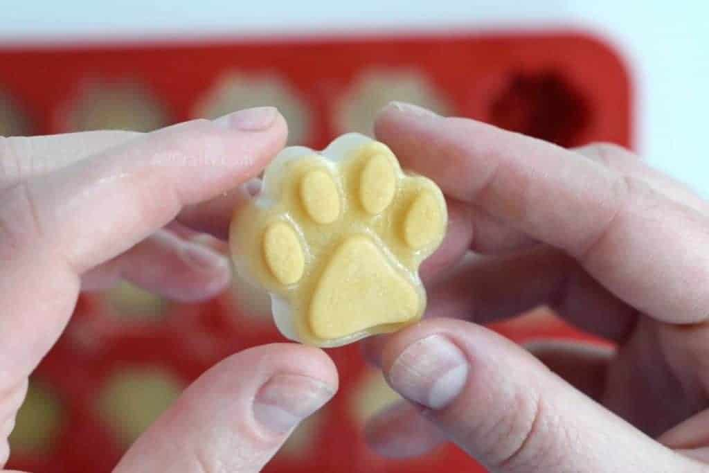 Holding finished homemade dog popsicle made of applesauce and chicken broth that's in the shape of a dog's paw