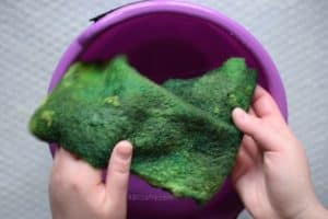 Holding green wet felted wool fabric over a plastic purple bucket filled with water