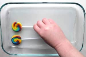 Placing small whirly pop lollipops onto wet fabric inside of a pyrex dish
