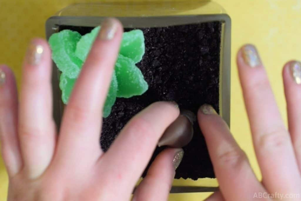 pushing the candy mushroom into the oreo dirt next to the candy succulent