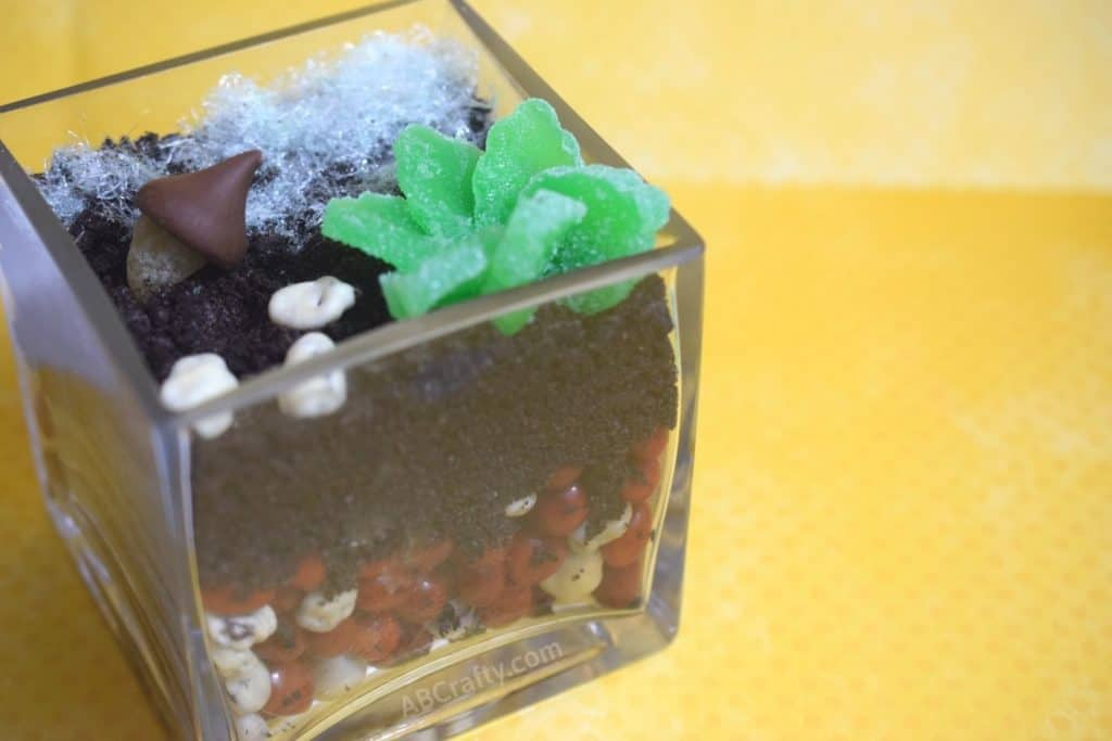 finished diy edible terrarium made of candy, oreos, and chocolate with rocks, plants, moss, and mushrooms all made out of candy