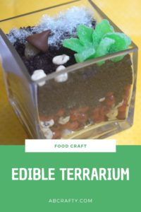 """glass terrarium made with candy including candy succelents and cotton candy grass. Title reads """"food craft, edible terrarium, abcrafty.com"""""""